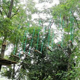 丛林飞跃1天方案
